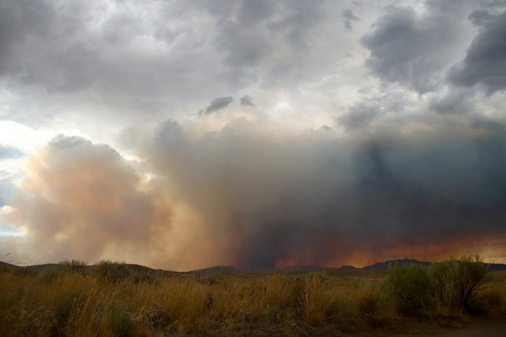 Bushfires in Australia 2020/2021